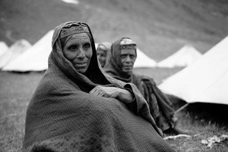 Pakistán_Indomitus-Tato Rosés